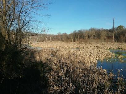 Mossy Creek Wildlife Viewing Area